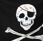 A Pirate's Adventure at Symphony Hall