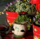 Those with dementia create herb pots