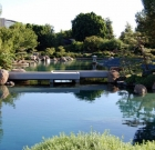 Japanese garden seeks volunteers to spruce up