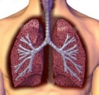 New drugs for lung cancer discussed