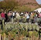 Garden offers spring plants for sale