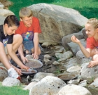 Search online for summer camp info