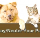 Low-cost spay, neuter