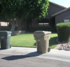 City looks to divert 'green' yard waste