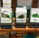 Get free seeds from the library