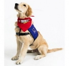 Therapy dog visits D-backs games